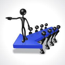 Zostań już dziś koordynatorem regionalnym lub lokalnym